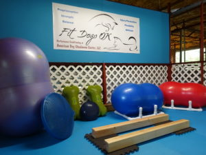 During 2016, renovations to training kennel included a canine fitness room.